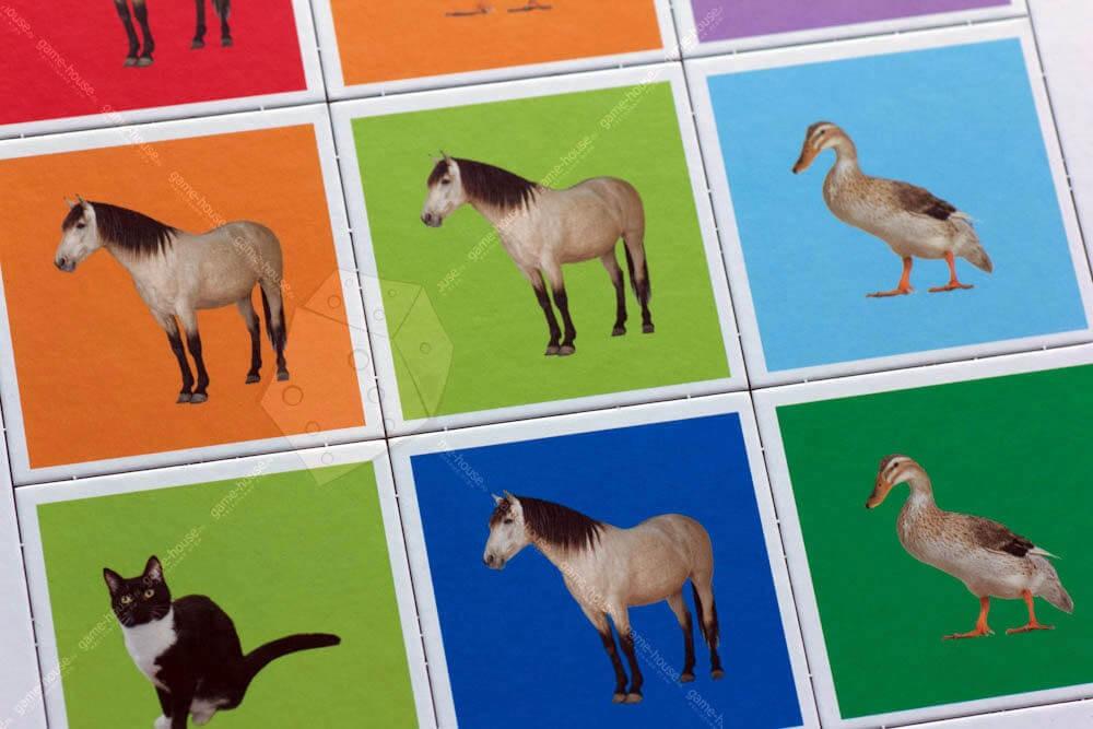 Картинки лото домашние животные